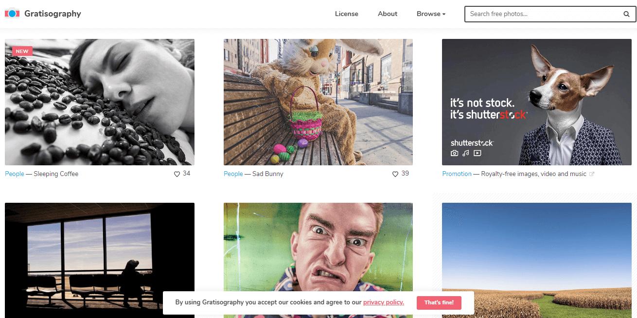 سایت Gratisography