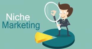 نیچ مارکتینگ یا بازاریابی جاویژه چیست؟